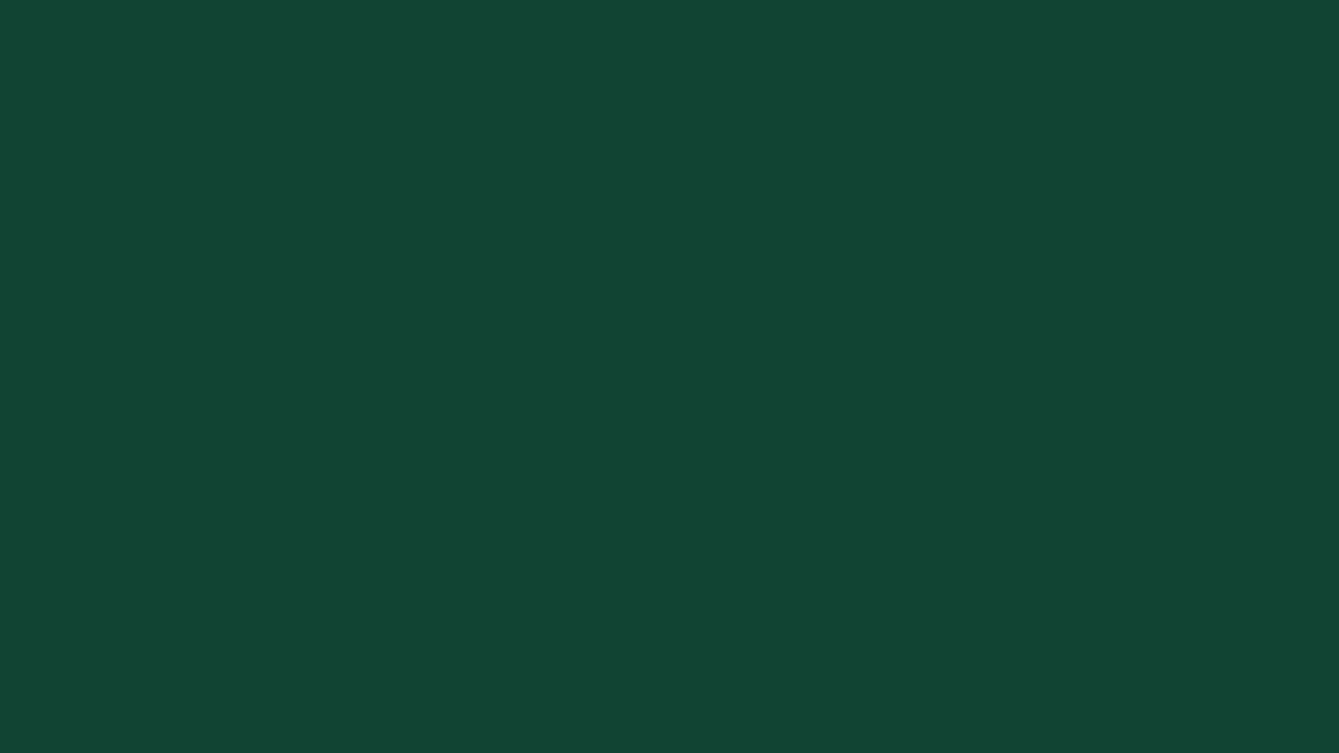 SMS Deurtechniek - RAL 6005 - mosgroen